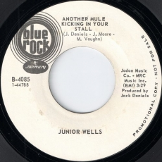 Junior Wells - Another Mule Kicking In Your Stall